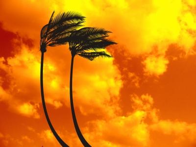 post-hurricane