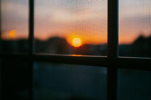 Window and Door Screens